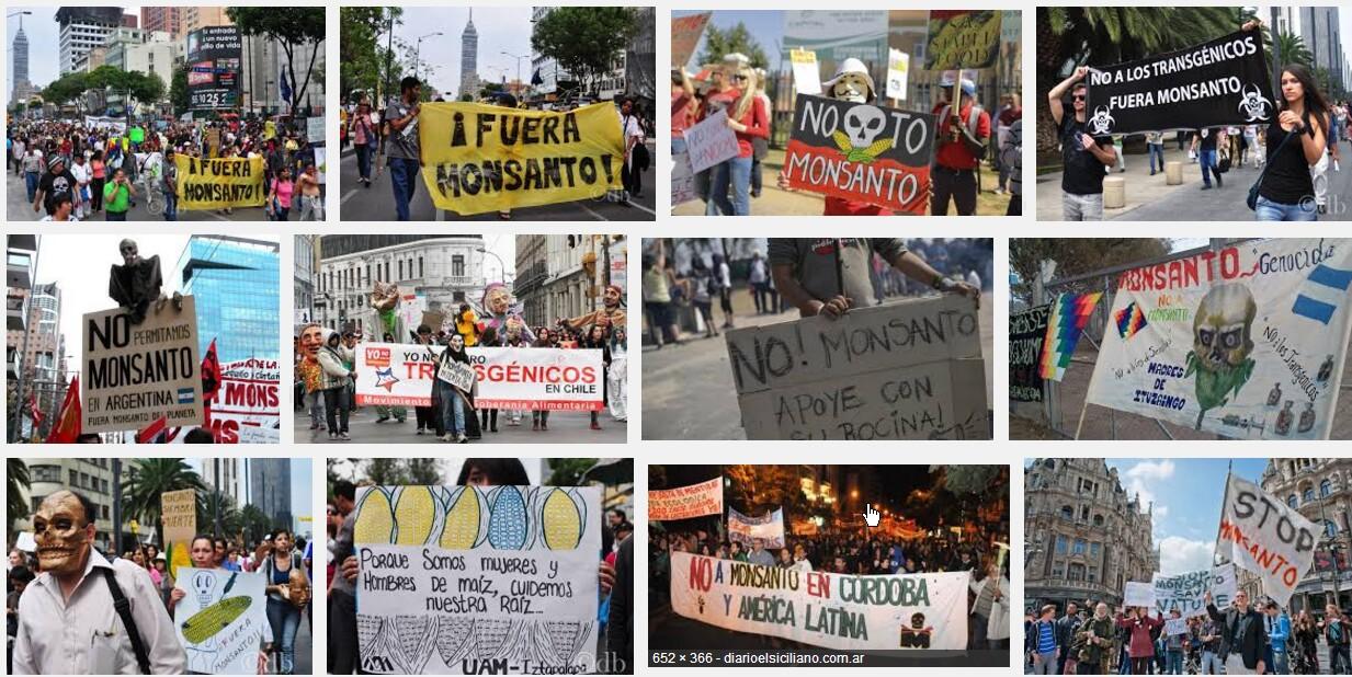Protesta contro monsanto